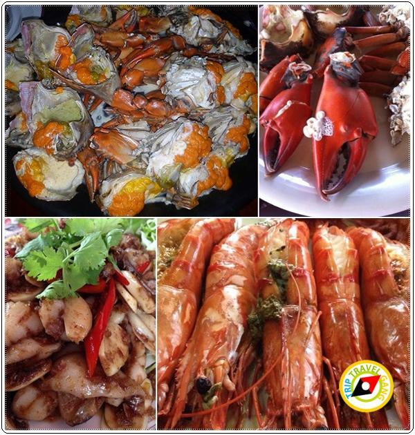 ร้านอาหารสมุทรสงคราม (1)