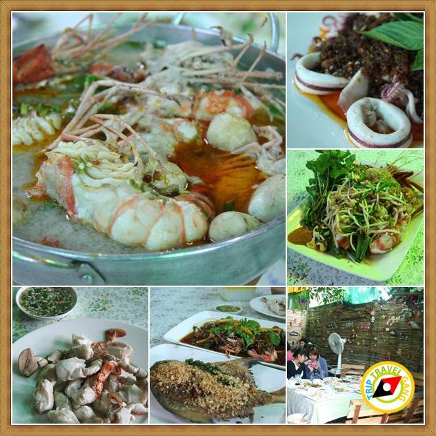 ร้านอาหารอร่อยอัมพวา แม่กลอง สมุทรสงคราม (2)