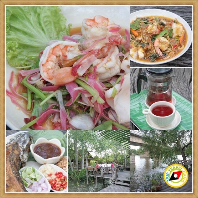 ร้านอาหารอร่อยอัมพวา แม่กลอง สมุทรสงคราม (4)