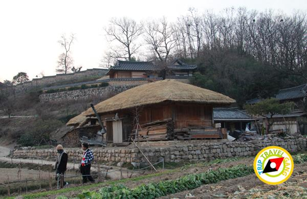 มรดกโลกเกาหลีใต้ (23)