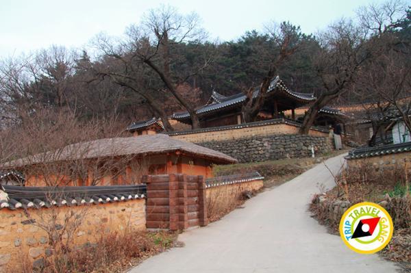 มรดกโลกเกาหลีใต้ (28)