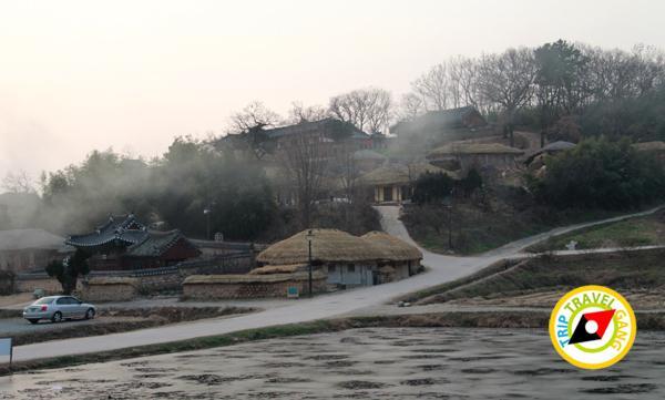 มรดกโลกเกาหลีใต้ (35)