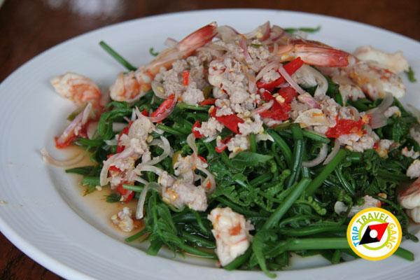 แพอาหารไทรโยค วินเนอร์ อำเภอไทรโยค กาญจนบุรี (1)