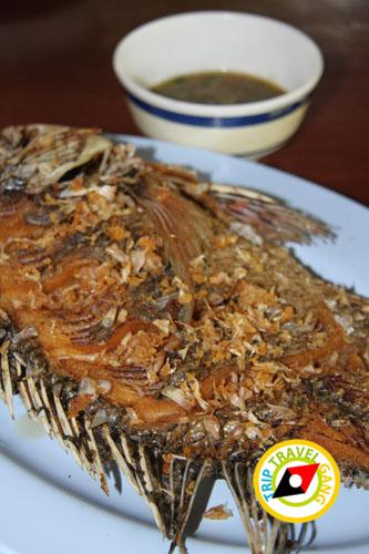 แพอาหารไทรโยค วินเนอร์ อำเภอไทรโยค กาญจนบุรี (8)
