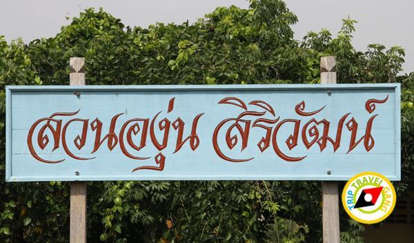 สถานที่ท่องเที่ยวมวกเหล็ก แก่งคอย สระบุรี Travel Guide Muak lek – Kaengkhoi Saraburi (18)