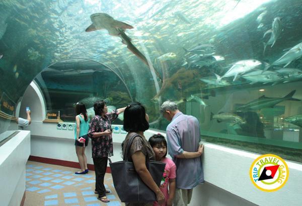 จันทบุรี ที่เที่ยว สถานที่ท่องเที่ยว แหล่งท่องเที่ยว สวย ทะเล (10)