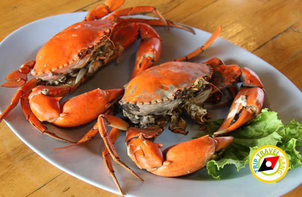 ที่พักโฮมสเตย์ กินปู นอนดูทะเล อร่อยไม่อั้นกับซีฟู้ดจัดเต็ม บรรยากาศดี สวย (3)