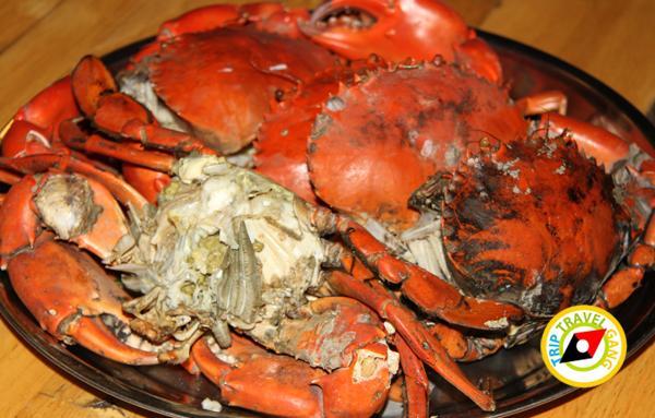 ที่พักโฮมสเตย์ กินปู นอนดูทะเล อร่อยไม่อั้นกับซีฟู้ดจัดเต็ม บรรยากาศดี สวย (4)