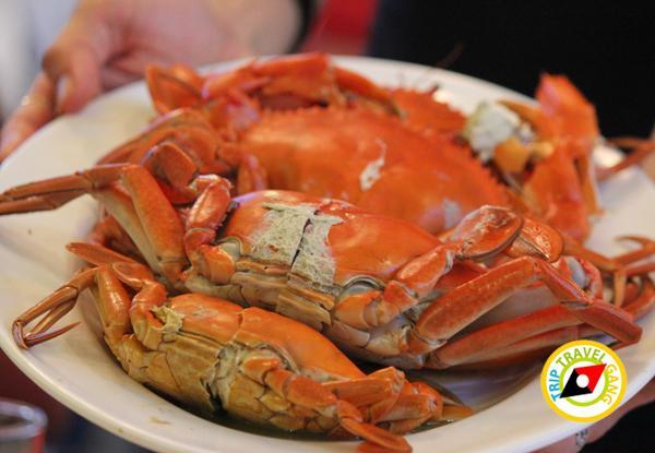 ที่พักโฮมสเตย์ กินปู นอนดูทะเล อร่อยไม่อั้นกับซีฟู้ดจัดเต็ม บรรยากาศดี (16)