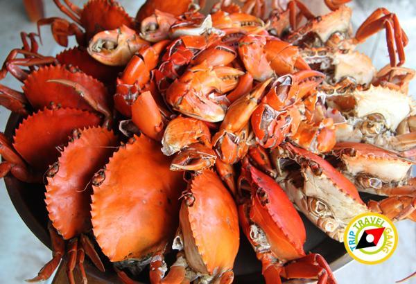 ที่พักโฮมสเตย์ กินปู นอนดูทะเล อร่อยไม่อั้นกับซีฟู้ดจัดเต็ม บรรยากาศดี (8)