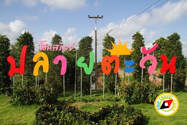ปลายตะวัน โฮมสเตย์ที่พัก กินปู แหลมสิงห์ จันทบุรี (1)