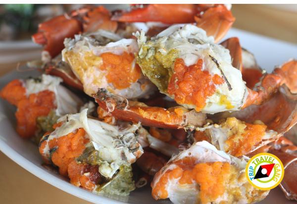 ร้านอาหาร ที่พักโฮมสเตย์ กินปู นอนดูทะเล อร่อยไม่อั้นกับซีฟู้ดจัดเต็ม บรรยากาศดี (4)