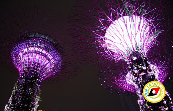 สิงคโปร์ (Singapore ท่องเที่ยว สถานที่ท่องเที่ยว ข้อมูล (15)