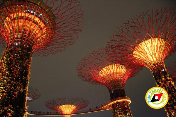สิงคโปร์ (Singapore ท่องเที่ยว สถานที่ท่องเที่ยว ข้อมูล (16)