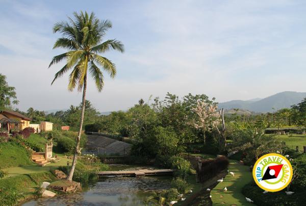 เขาใหญ่ ปากช่อง ที่พัก รีสอร์ท โรงแรม สวย บรรยากาศดี ราคาถูก วิวสวย (2)