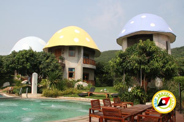 เขาใหญ่ ปากช่อง ที่พัก รีสอร์ท โรงแรม สวย บรรยากาศดี ราคา (3)