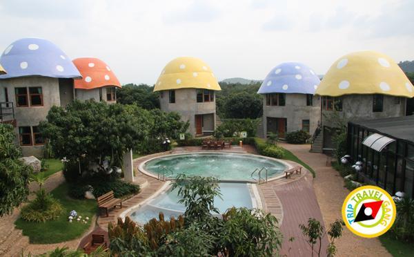 เขาใหญ่ ปากช่อง ที่พัก รีสอร์ท โรงแรม สวย บรรยากาศดี ราคา (4)