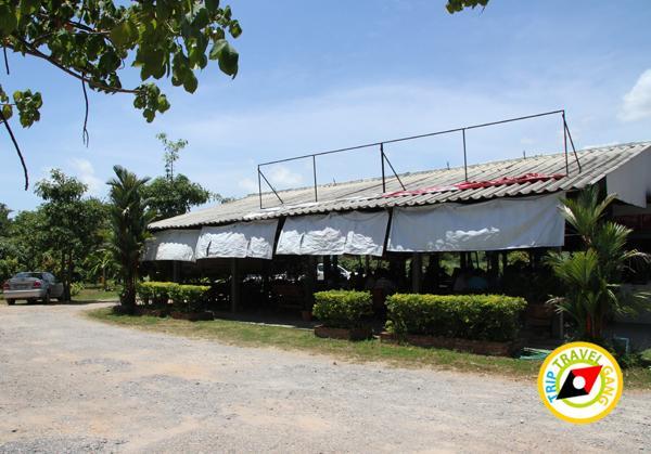 ร้านผัดไทยป้าถวิล ผัดไทยวังทอง ที่กิน ร้านอาหารอร่อยราคาถููก แนะนำพิษณุโลก (3)