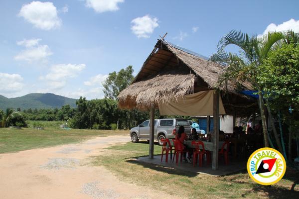 ร้านผัดไทยป้าถวิล ผัดไทยวังทอง ที่กิน ร้านอาหารอร่อยราคาถููก แนะนำพิษณุโลก (6)