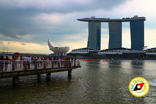 เที่ยวสิงคโปร์ มาเลเซีย (6)