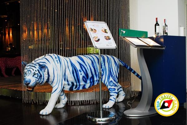 Dream hotel โรงแรมดรีมโฮเทล กรุงเทพฯ (1)
