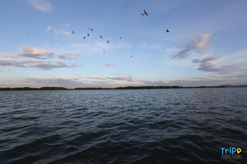 ริมทะเลจันทร์โฮมสเตย์ กืนปูจันทบุรี (1)