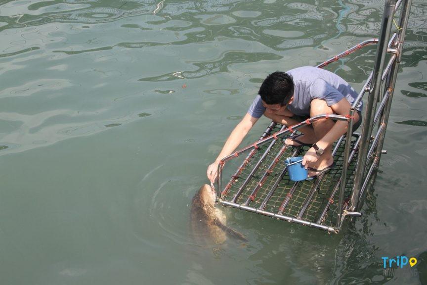 ที่เที่ยวถนนเฉลิมบูรพาชลทิต ระยอง-จันทบุรี (6)