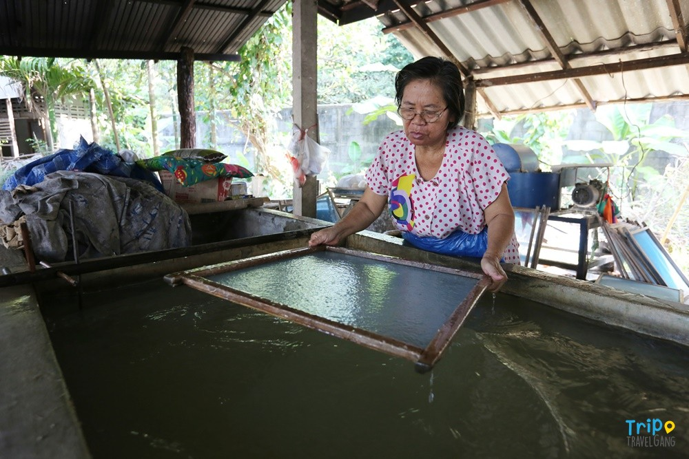 ที่เที่ยวเชียงใหม่ ท่องเทียว แหล่งท่องเที่ยว chiang mai (12)