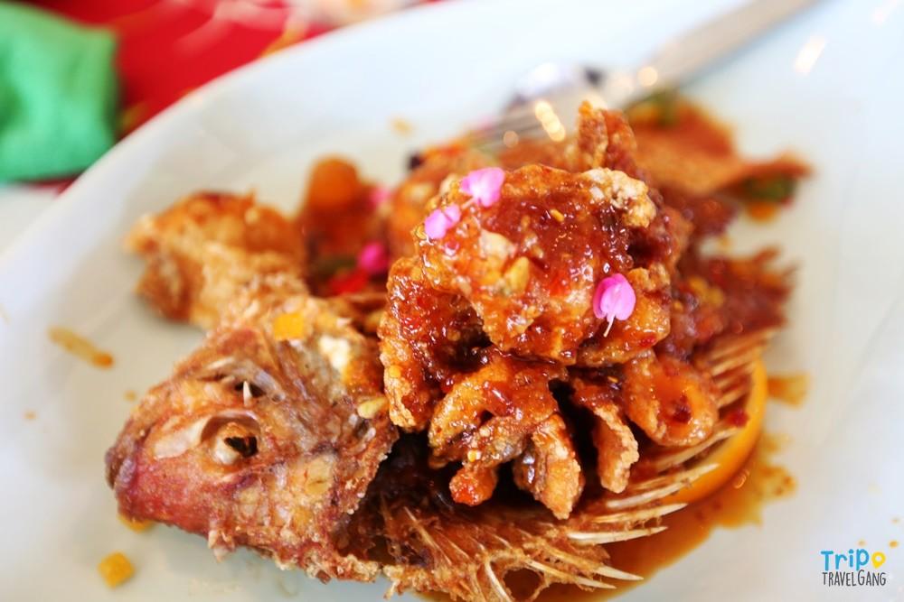 ที่เที่ยวเชียงใหม่ ท่องเทียว แหล่งท่องเที่ยว chiang mai (25)