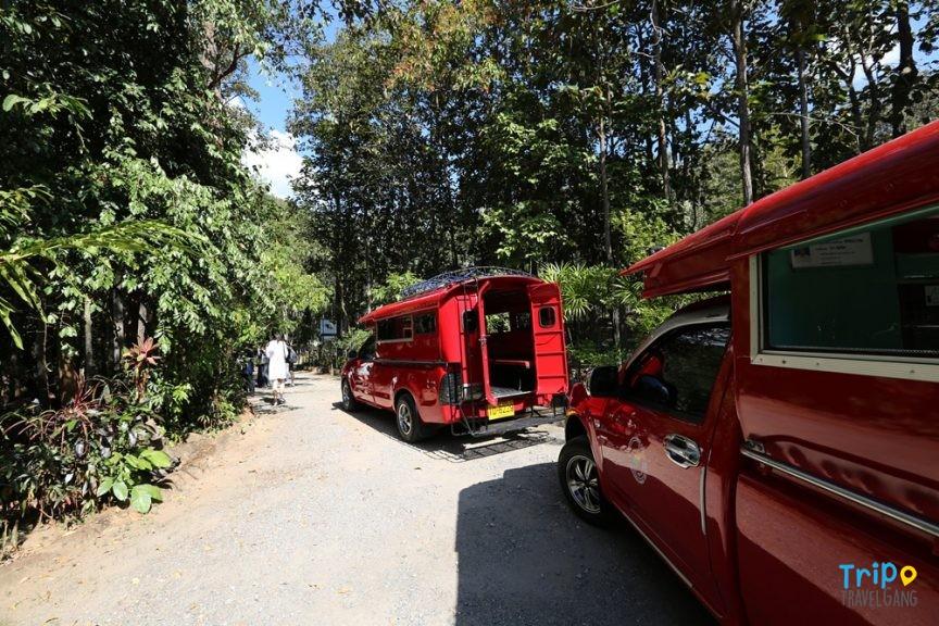 ที่เที่ยวเชียงใหม่ ท่องเทียว แหล่งท่องเที่ยว chiang mai (65)