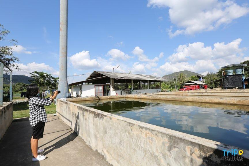 ที่เที่ยวเชียงใหม่ ท่องเทียว แหล่งท่องเที่ยว chiang mai (67)