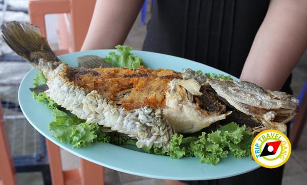 ร้านอาหารเรือนวารี แม่กลอง สมุทรสงคราม (20)