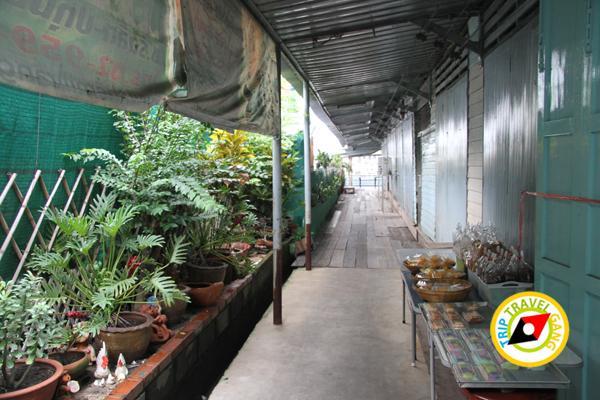 ภัตตาคารริมน้ำ ฮงเส็ง ร้านอาหาร บรรยากาศดี ริมแม่น้ำเจ้าพระยา นนทบุรี (30)