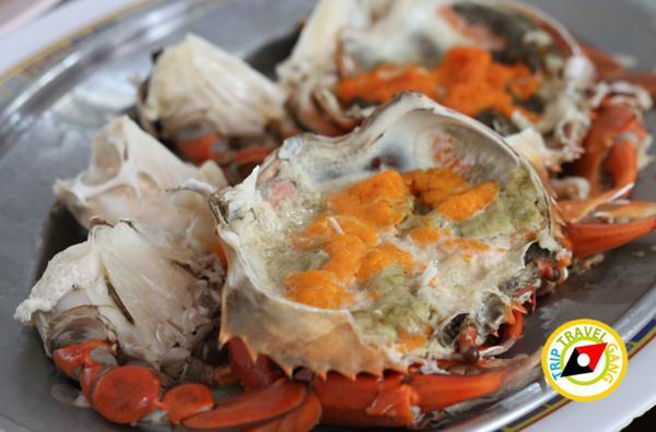 แดงอาหารทะเล (เจ้าเก่า) แม่กลอง สมุทรสงคราม (1)