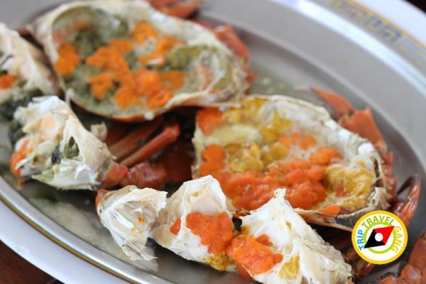 แดงอาหารทะเล (เจ้าเก่า) แม่กลอง สมุทรสงคราม (10)