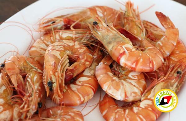 แดงอาหารทะเล (เจ้าเก่า) แม่กลอง สมุทรสงคราม (12)