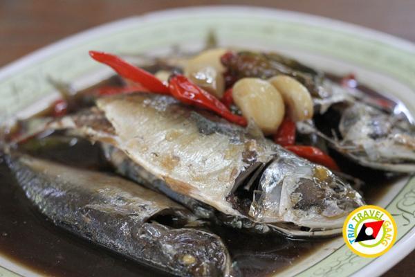 แดงอาหารทะเล (เจ้าเก่า) แม่กลอง สมุทรสงคราม (5)