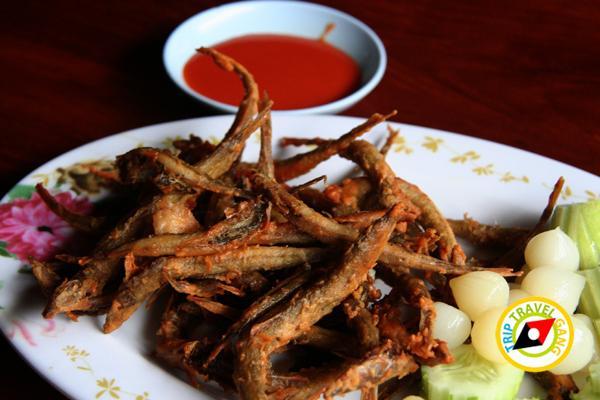 ร้านอาหารกานต์กิตติ Kankitti Restaurant (10)
