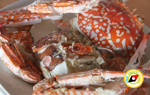 ครัวจ๊ะโอ๊ซีฟู้ด สาขา 1 ร้านอาหารบางขุนเทียน ร้านซีฟู้ดชายทะเลบรรยากาศดี กรุงเทพฯ (6)