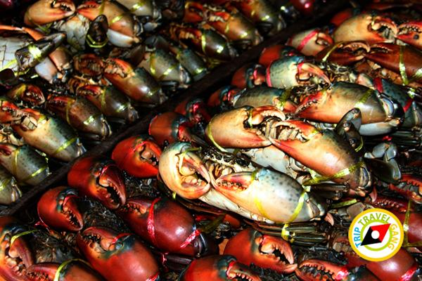 ครัวรุ่งฟ้าซีฟู้ด สาขา 2 ร้านอาหารบางขุนเทียน ร้านซีฟู้ดชายทะเลบรรยากาศดี กรุงเทพฯ (2)