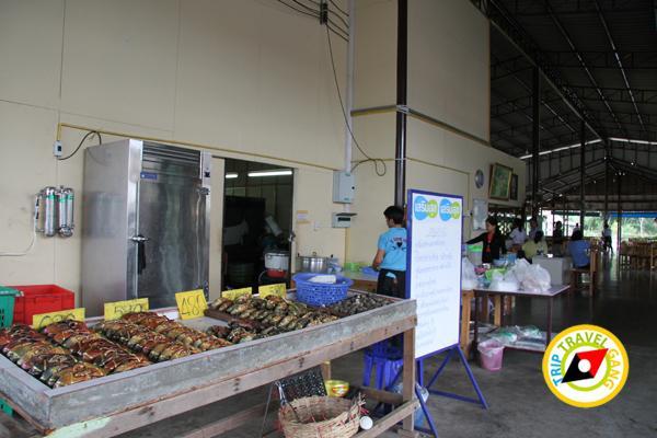 ครัวรุ่งฟ้าซีฟู้ด สาขา 2 ร้านอาหารบางขุนเทียน ร้านซีฟู้ดชายทะเลบรรยากาศดี กรุงเทพฯ (5)