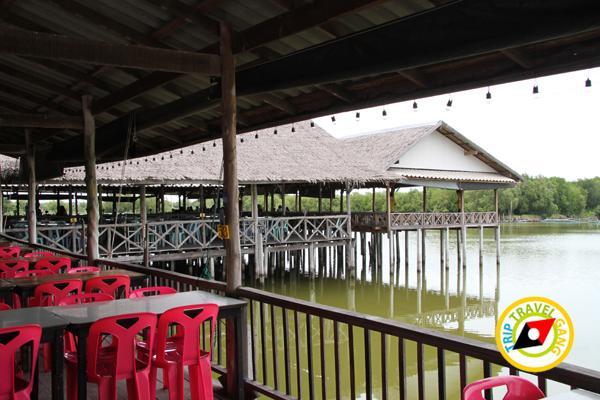 ครัวลุงแถม ร้านอาหารบางขุนเทียน ร้านซีฟู้ดสุดอร่อยชายทะเลบรรยากาศดี กรุงเทพฯ (1)