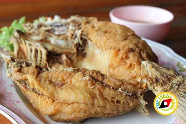 ครัวลุงแถม ร้านอาหารบางขุนเทียน ร้านซีฟู้ดสุดอร่อยชายทะเลบรรยากาศดี กรุงเทพฯ (5)