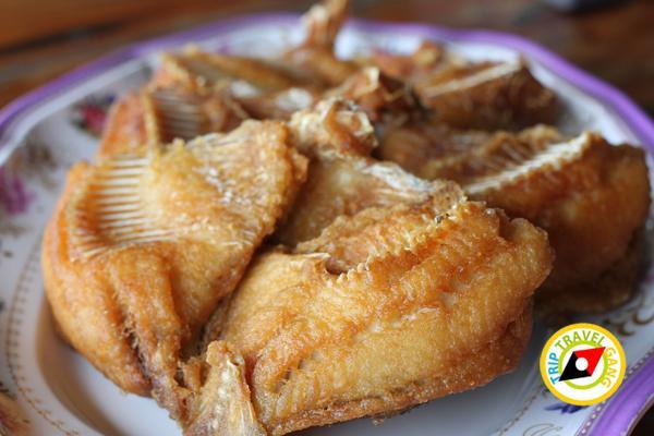ครัวลุงแถม ร้านอาหารบางขุนเทียน ร้านซีฟู้ดสุดอร่อยชายทะเลบรรยากาศดี กรุงเทพฯ (6)