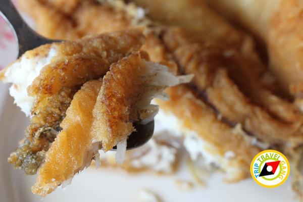 เทียนทะเลซีฟู้ด ร้านอาหารบางขุนเทียน ร้านซีฟู้ดสุดอร่อยชายทะเลบรรยากาศดี กรุงเทพฯ (1)