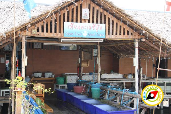 เทียนทะเลซีฟู้ด  ร้านอาหารบางขุนเทียน ร้านซีฟู้ดสุดอร่อยชายทะเลบรรยากาศดี กรุงเทพฯ (4)