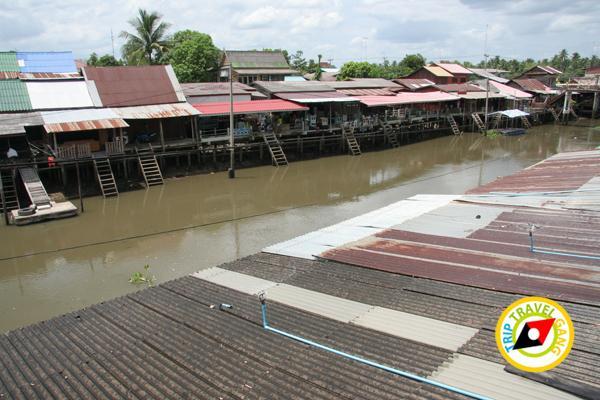 บางน้อยคอยรัก ตลาดน้ำบางน้อย อัมพวา สมุทรสงคราม (5)