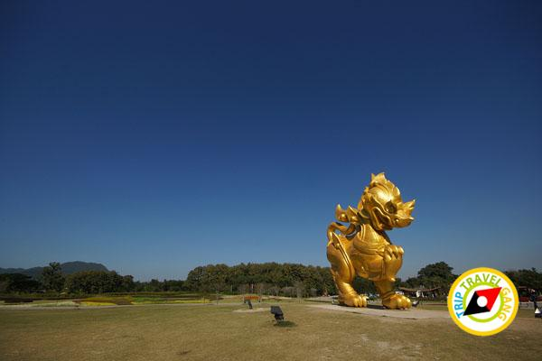 สิงห์ปาร์ค เชียงราย ไร่บุญรอด Singha Park Chiang Rai ปี 2014 ท่องเที่ยวเชียงราย (23)