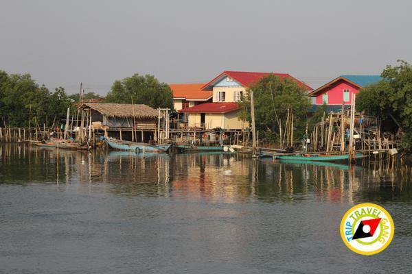 ครัวบ้านประมง  ร้านอาหารซีฟู้ด ริมทะเลบางขุนเทียน แนะนำ อร่อย Seafood  (2)