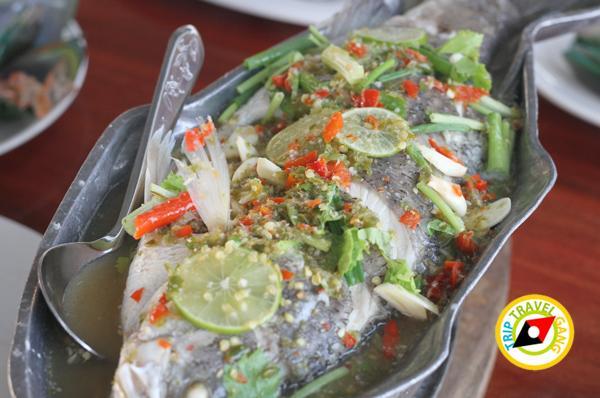 ครัวบ้านประมง  ร้านอาหารซีฟู้ด ริมทะเลบางขุนเทียน แนะนำ อร่อย Seafood  (24)
